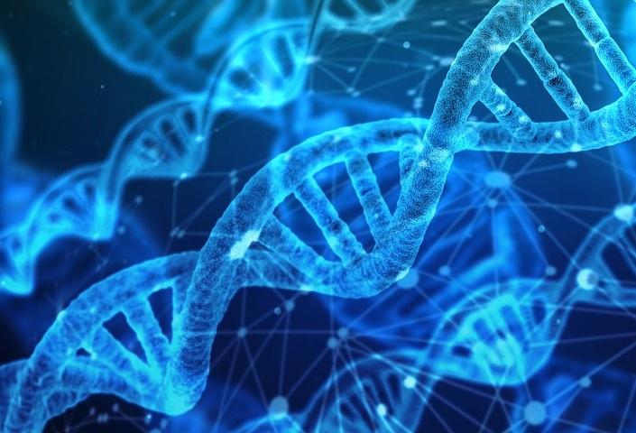 Łańcuch DNA