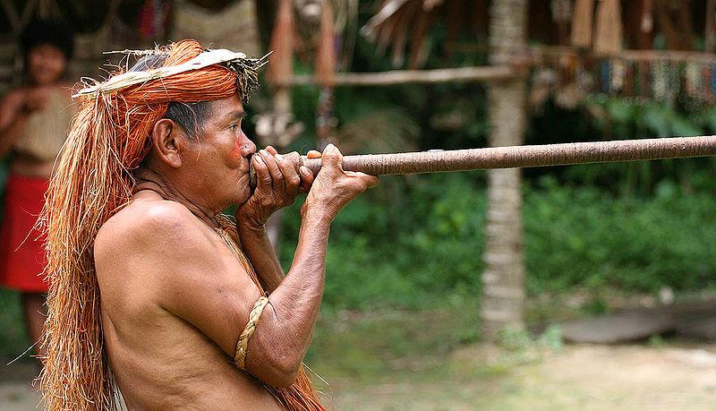 Indianin z Amazonii, Wikimedia Commons