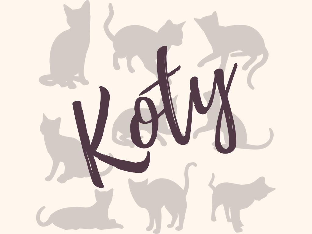 Rodzinne warsztaty twórcze: Koty