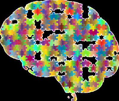 Mózg, Pixabay