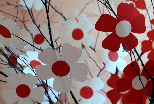 biało-czerwone kwiaty