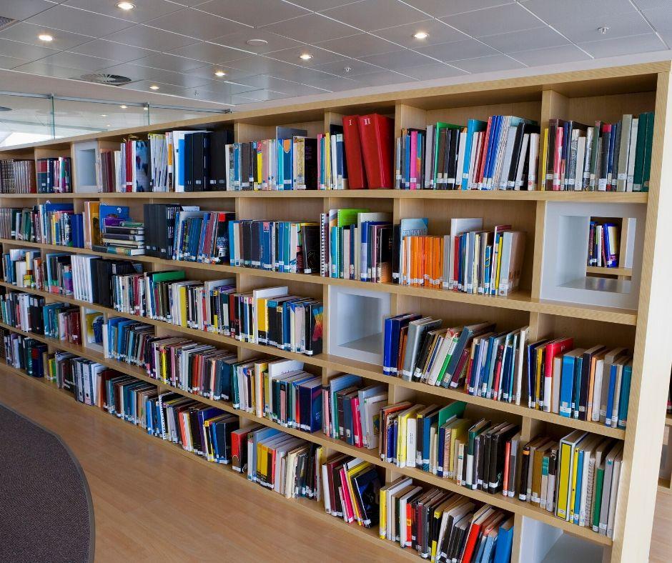 Biblioteka - regały z książkami