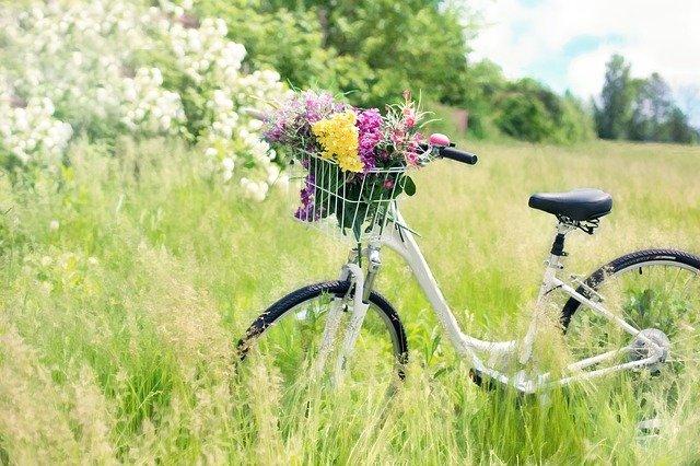 Na pierwszym planie stoi biały rower, damka z koszem zawieszonym na kierownicy, wypełnionym kolorowymi kwiatami. Rower znajduje się na łące wśród zieleni traw, w oddali widać kwitnące drzewa i krzewy. Niebo jest pogodne.