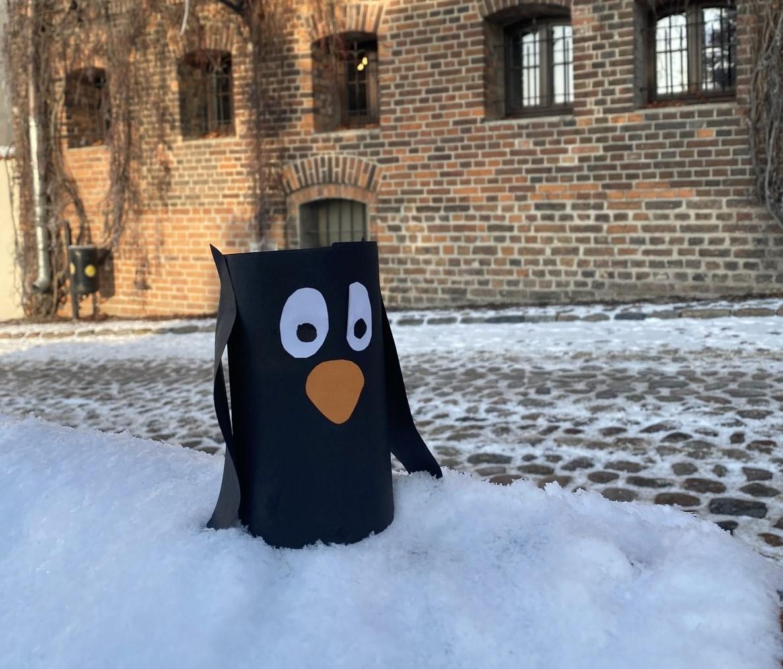 Śladami Pingwinów | e-Warsztaty dla dzieci