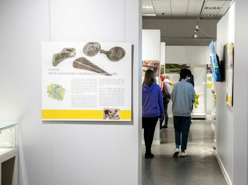 zwiedzanie wystawy w Biskupinie