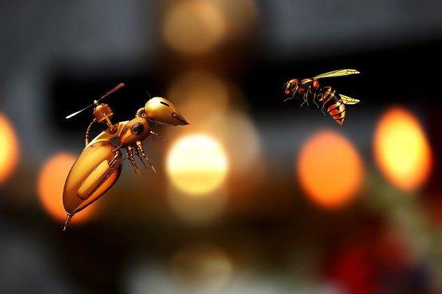 pszczoła-robot i pszczoła